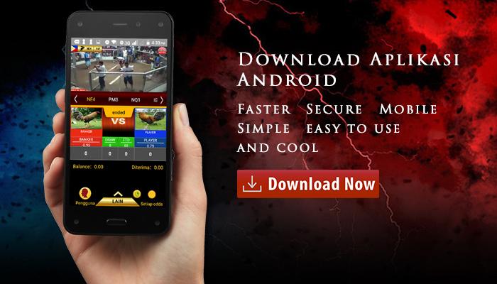 Aplikasi S128 Android Sabung Ayam apk
